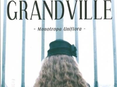 Coup de cœur Décembre d'Eloïse: Les brumes de Grandville